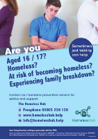 Homeless Hub Posters